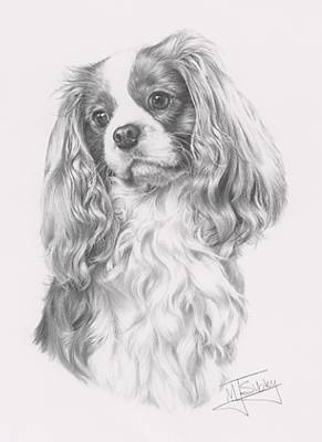print of a cavalier king charles spaniel by the
