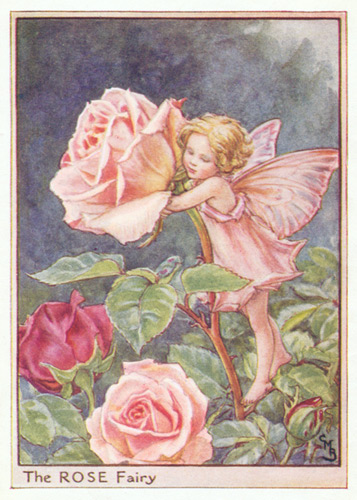 Flower fairy art pink purple and lilac antique flower fairies antique fairy print rose fairy mightylinksfo
