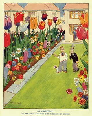 Antique Garden Cartoon. The Bulb Catalogue That Fulfilled Its Promise